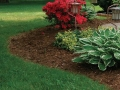 041106244_mulch_to_smother_weeds_xlg_1-jpg