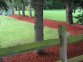 red_mulch_2.2580622_large