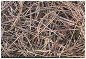 Снимка на мулч от борови иглички